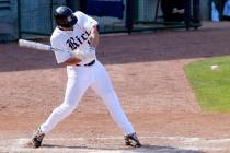 baseball-video-game-study