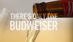 budweiser super bowl ad